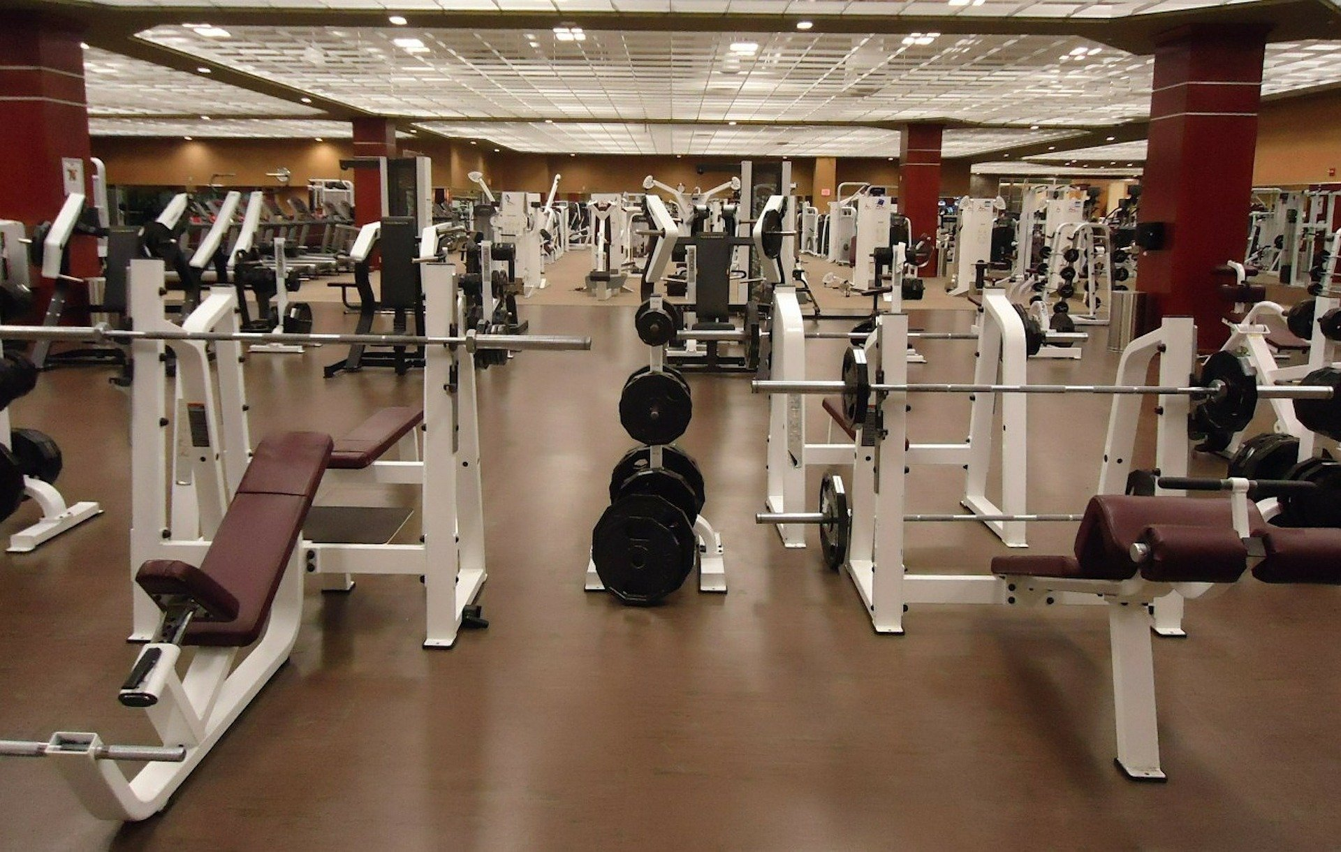 Gyms & Fitness Centers